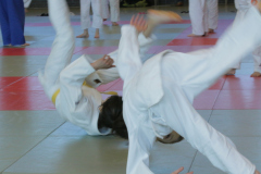 Training-12